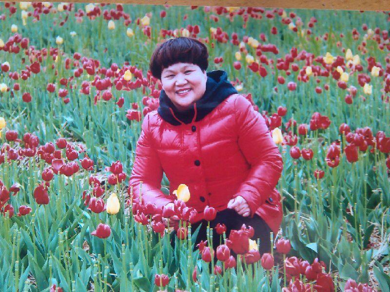 站在草原望北京 站在草原望北京简谱 我站在草原望北京