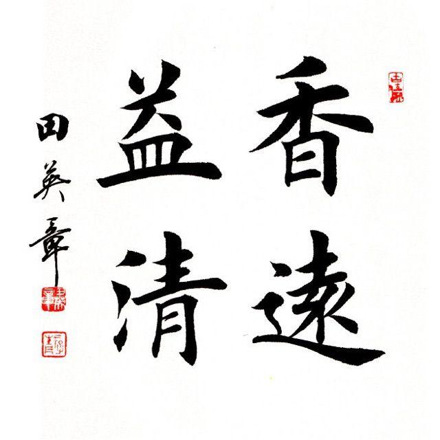 田英章楷书书法作品大全 大字欣赏