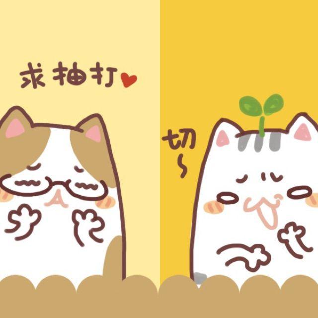 叠叠猫卡通手绘