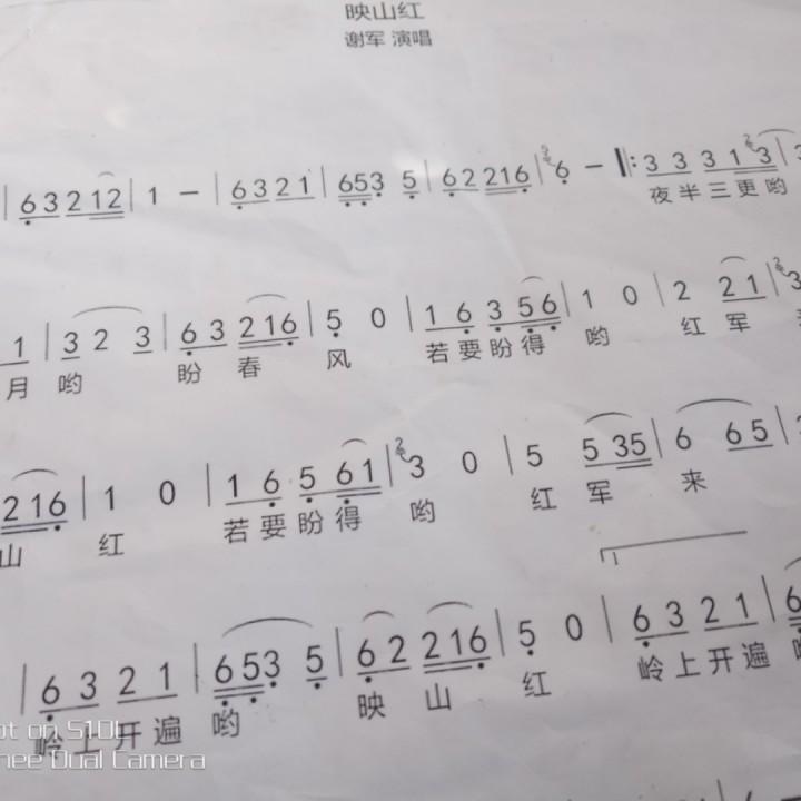 映山红【合唱版】
